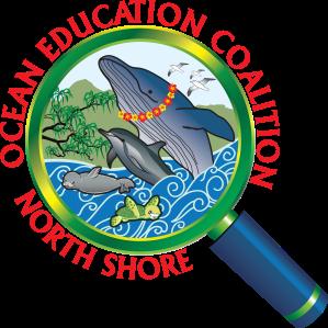 NSOF logo